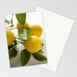 Branch of Lemons Stationery Cards