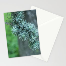 Conifer tree Stationery Cards