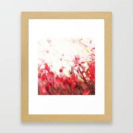 Coral Floral Framed Art Print