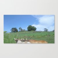 cows Canvas Prints featuring Cows by Rosa bella