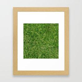 Grass Textures Turf Framed Art Print