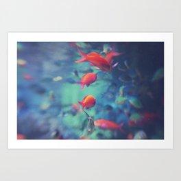 Fish Blur Art Print
