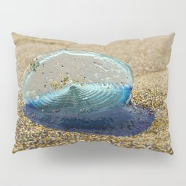 Velella Velella (By-the-Wind Sailor) Pillow Sham