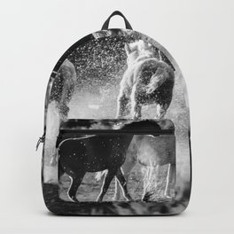 Hijinks at the Waterhole bw Backpack