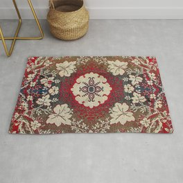 Botanical Embroidery III // Flowery Colorful Red Blue Green Yellow Tan Ornate Accent Rug Pattern Rug