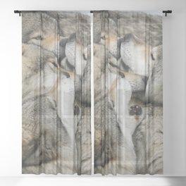 Muzzle Nuzzle Sheer Curtain