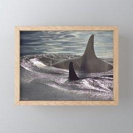 Orca Framed Mini Art Print