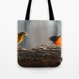 Baltimore Orioles - A Dysfunctional Family - A Nature Art Print Tote Bag