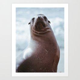 Sea Lion Love Art Print
