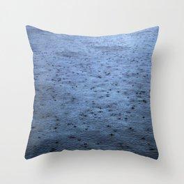 Estuary Rain Throw Pillow