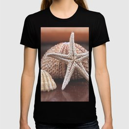 seashells 3 T-shirt