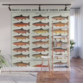 Illustrated Trout, Salmon and Char Fishing Identification Chart of North America Wall Mural