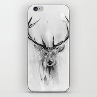 portrait iPhone & iPod Skins featuring Red Deer by Alexis Marcou