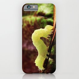 Close-up Green Inchworm And Its Looping Gait iPhone Case