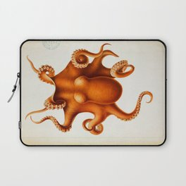 Octopus Cephalopod 1915 Laptop Sleeve