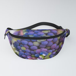 Bunches of Grapes  Fanny Pack