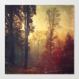 Quite Morning Canvas Print