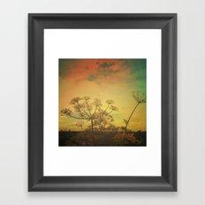 Summer Enchantment Framed Art Print