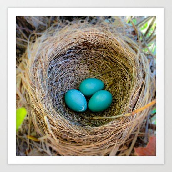 Three Little Robin's Eggs Art Print