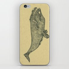 Northern Right Whale iPhone & iPod Skin