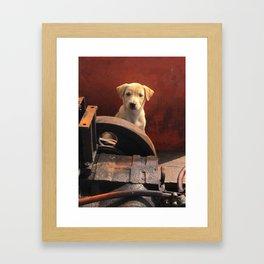 Junkyard stray Framed Art Print