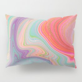 Should Have Taken Acid With You. Pillow Sham