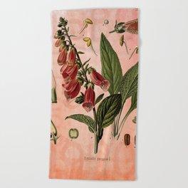 Vintage Botanical Illustration Collage, Foxgloves, Digitalis Purpurea Beach Towel