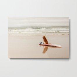 Dog waiting on the beach Metal Print