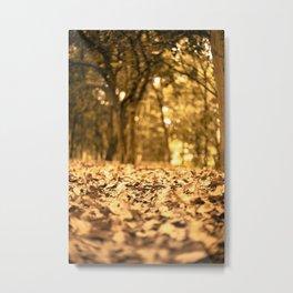 Gold Atumn Metal Print