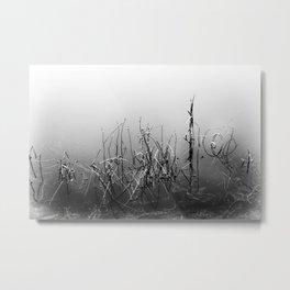 Echoes Of Reeds 3 Metal Print