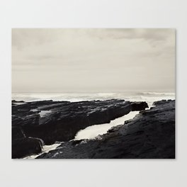 Wild Coast Canvas Print
