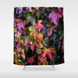 Boston Ivy Beauty Shower Curtain