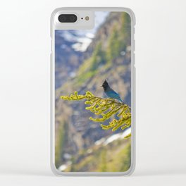 Steller's Jay (Canadian Blue Jay) in the forest Clear iPhone Case
