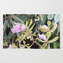 Epicyclia Mabel Kanda Flowers Rug