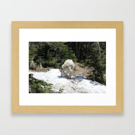 A Case of the Munchies Framed Art Print