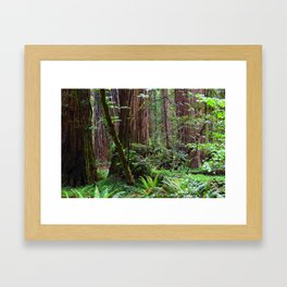 Cathedral of Giants Framed Art Print