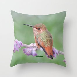 DO NOT Raid My Patch of Sage Throw Pillow