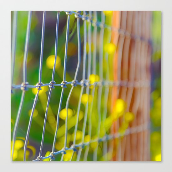 Spring Fence Canvas Print