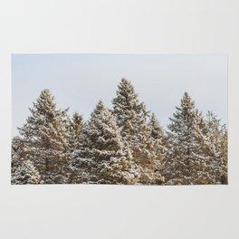 Shades of Winter Rug