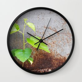 Fresh green with rusty grey Wall Clock