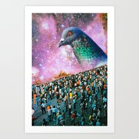 pigeon Art Prints featuring Pigeon by John Turck