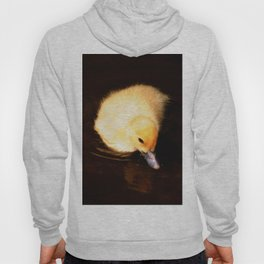 Baby Duckling Swimming Hoody