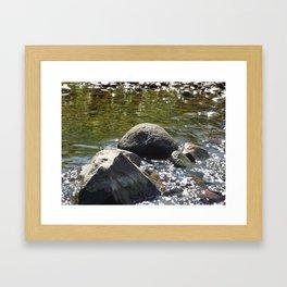 Rocks in a River Framed Art Print