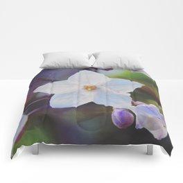 White Star Comforters