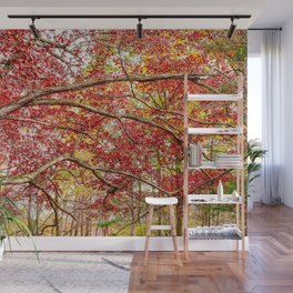 Letchworth Trees Wall Mural