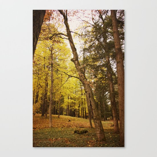 The Last Days of Grace Canvas Print