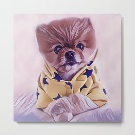 Pomeranian Wearing Pajamas Metal Print