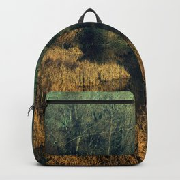 Lake to the past Backpack