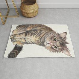 Messy Cat Rug