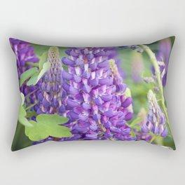 Longwood Gardens - Spring Series 118 Rectangular Pillow